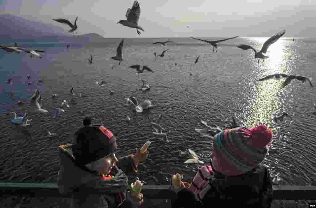 Pamje piktoreske e Liqenit të Ohrit në Maqedoni dhe fëmijët duke ushqyer zogjtë.