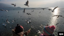 Children feed the birds at picturesque Lake Ohrid, Macedonia. (epa/Georgi Licovski)