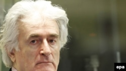 Radovan Karadzic in the courtroom in The Hague on November 3.