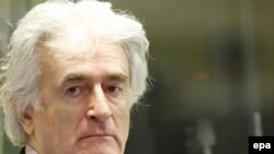 Former Bosnian Serb leader Radovan Karadzic in court in The Hague