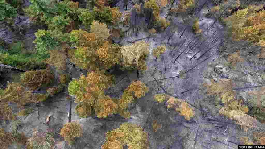 Foto nga droni të malit të djegur në Shtupeq të Bjeshkëve të Nemuna.