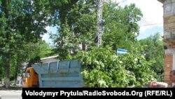Зрізані дерева, Сімферополь, 23 червня 2011 року