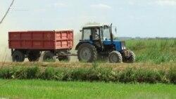 Туман МИБи фермерлардан мусодара қилинган 100 дан ортиқ тракторни соттириб юборди