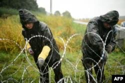 Венгерские военные ставят заграждения на границе с Сербией, сентябрь 2015 года