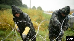 Hungarian soldiers installing a barb-wire fence on the Slovenian border.