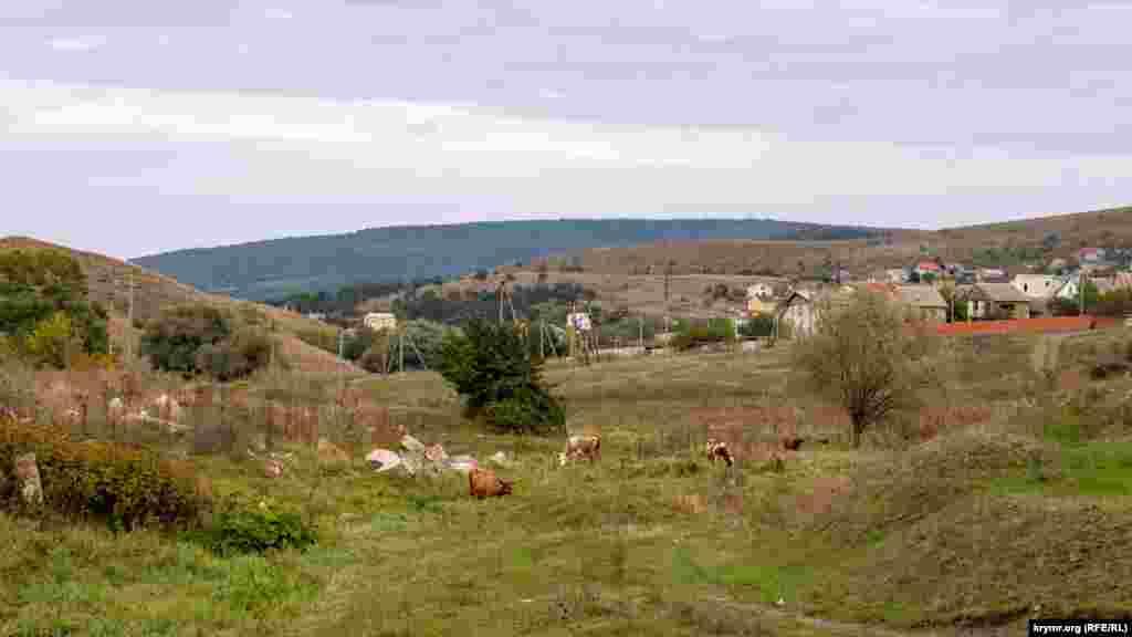 На лугу в долине (балке) реки Курцы, на восточной окраине села Украинка. Дальше, за холмом слева, виднеются усадьбы соседнего села Петропавловка