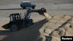Собранного зерна России хватит как для внутренних потребностей, так и для экспорта