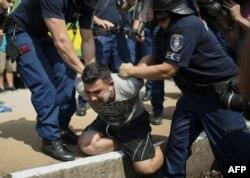 Венгерская полиция перехватывает нелегальных мигрантов. 3 сентября