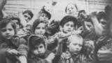 Дети в концлагере Освенцим-Биркенау после освобождения, 1945 год