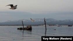 Kunaşir adasının yaxınlığı