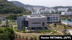 Institutul Wuhan s-a deschis în 1965, ca o instalație de microbiologie, cu accent pe agricultură.