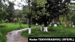 დიღმის პარკი