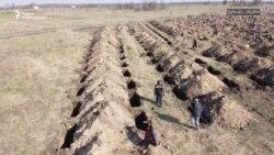ქალაქ დნეპრის თვითმმართველობამ 600 საფლავი გათხარა