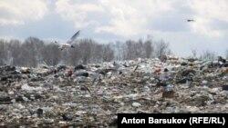 Свалка мусора, иллюстрационное фото