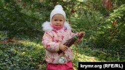 Крым, поселок Никита, дети сотрудников Никитского сада украсили игрушками-самоделками тис ягодный, 30 декабря 2016 года