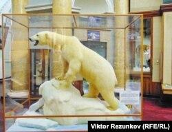 Экспонат музея Арктики и Антарктики