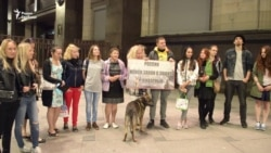 Защитники животных пикетируют Госдуму
