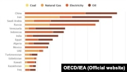 Energy Subsidies by Country, 2016 based on OECD/IEA report.