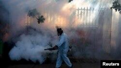 Oprašivanje, borba protiv komaraca koji su glavni prenosnici zika virusa, 26. januar 2016.