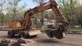 Карагандинцы требуют остановить массовую вырубку деревьев