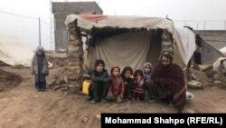 بیجاشدگان داخلی در هرات