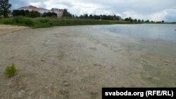 Ля берага плёнка арганічнага рэчыва