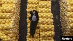 Грейпфрут жемісінің үстінде жатқан адам. Хубэй провинциясы, Ухань қаласы, 15 қараша 2012 жыл.