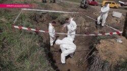 """""""Погибших не делим на своих и чужих"""": в Донбассе найдено массовое захоронение"""