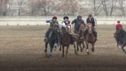 Polish Horses Chasing Kyrgyz Goats
