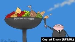 Россия -- Ежедневная карикатура Сергея Елкина.