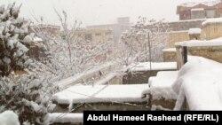 بارش برف در شهر کابل