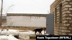 Ұзақбаевтар әулетінің салынып бітпеген үйі. 18 ақпан 2012 жыл.