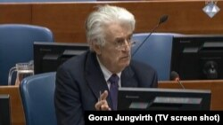 Поранешниот политички лидер на босанските Срби, Радован Караџиќ