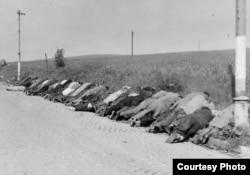 Трупы погибших в результате массовых расправ в одном из регионов Чехословакии летом 1945 года