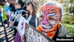 Акция протеста против использования животных в цирке, 15 апреля 2017 год