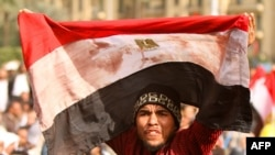 Egypt -- An anti-government protester waves a bloodstained Egyptian flag in Cairo's landmark Tahrir Square, 04Feb2011