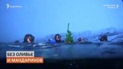 Дайверы установили новогоднюю ёлку в Баренцевом море