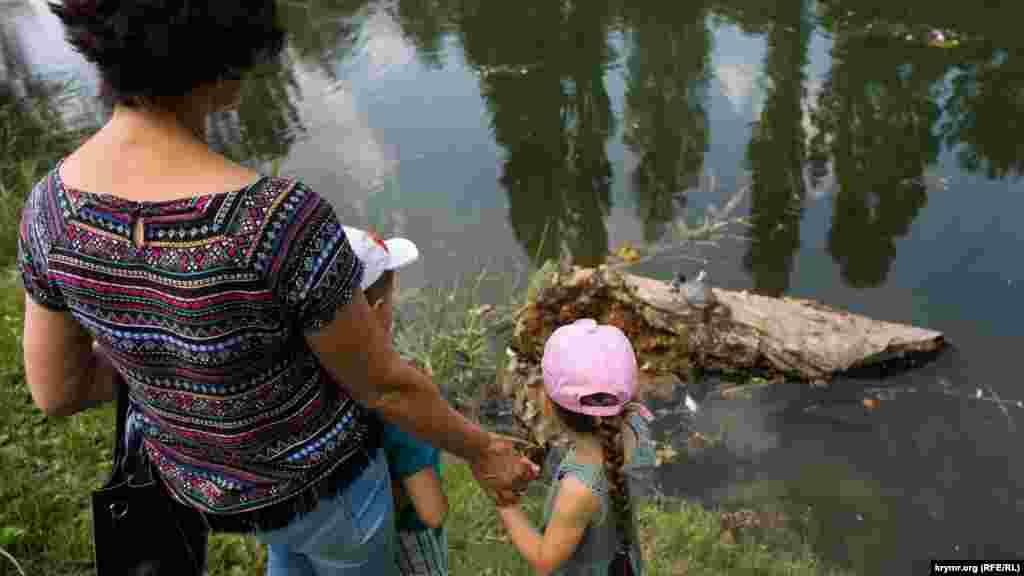 Жінка з дітьми спостерігає за черепахою, що «засмагає» на колоді в ставку парку імені Гагаріна