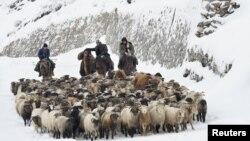 Казахи-скотовладельцы в Синьцзяне. Китай. 21 ноября 2015 года.