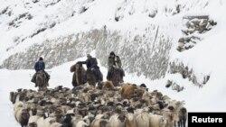 Казахские пастухи проводят своих овец и коз среди снега. Синьцзян-Уйгурский автономный район, Китай, 21 ноября 2015 года.