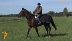 Лошади Кадырова нашли комфорт в Чехии