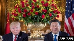 Donald Trump i Si Đinping