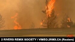 """Columbia Britanică a fost printre cele mai afectate regiuni de către valul de căldură care a cauzat incendii în Canada și SUA în ultimele zile. Numărul deceselor datorate unor cauze """"subite"""" a crescut la 486."""