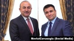 Türkiye TİN yolbaşçısı Mevlüt Çavuşoğlu ve Ukraina TİN yolbaşçısı Pavlo Klimkin