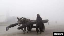 A Pakistani man walks beside his donkey and cart carrying steel bars on a foggy morning in Lahore. (Reuters/Mohsin Roza)