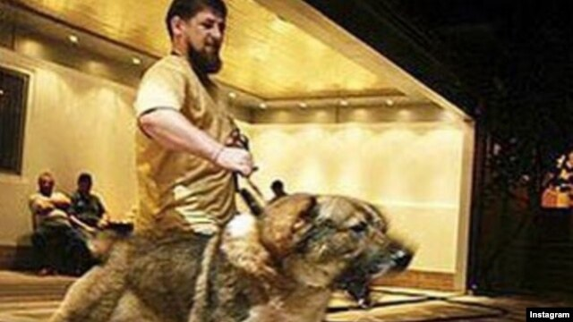 """This again is Tarzan...Our old friend,"" Daudov wrote above a picture of Kadyrov restraining a lunging Caucasian Shepherd dog. ""Tarzan just hates dogs of foreign stripes...Especially American ones."""