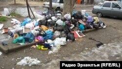 В некоторых районах города отсутствуют контейнеры для мусора