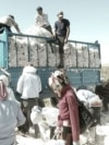 Ғарб давлатларидаги ҳуқуқ ҳимоячилари¸ бизнес ва инвестиция гуруҳларидан тузилган Cotton Campaign коалицияси2010 йили болалар ва мажбурий меҳнат эвазига терилган ўзбек пахтасига бойкот эълонқилган.