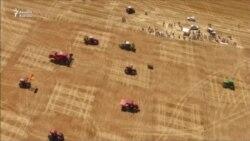 İspaniyada traktorların şahmat oyunu