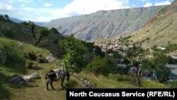 Горный Дагестан (архивное фото)